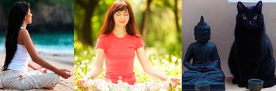 Биологический возраст практикующих медитацию многие годы на 10 лет меньше