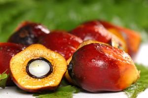 Пальмовое масло польза для сердца