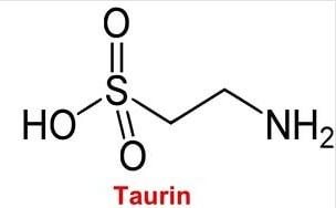 Таурин - сульфокислота, образующаяся в организме из аминокислоты цистеина