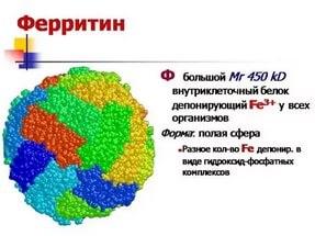 ферритин