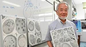Лауреат Нобелевской премии в области медицины и физиологии 2016 года, Ёсинори Осуми, который получил премию за описание механизма аутофагии